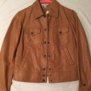NWT Brown Leather Jacket